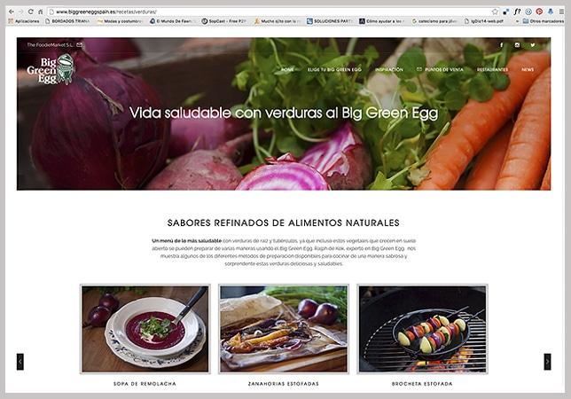 Diseño de Páginas Web WordPress Vitoria-Gasteiz